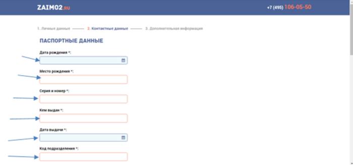 МКК Бирюза (zaim02.ru) — паспортные данные
