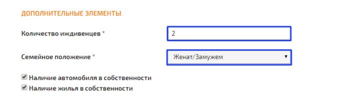 МКК Займоград - дополнительные элементы