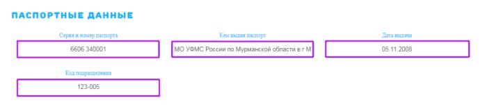 МКК ВикПэй Экспресс - паспортные данные