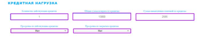 МКК ВикПэй Экспресс - кредитная нагрузка