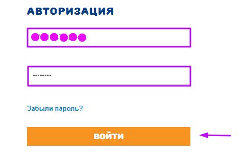 МКК ВикПэй Экспресс - авотризация